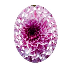 Wonderful Flowers Ornament (oval Filigree)