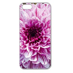 Wonderful Flowers Apple Seamless Iphone 5 Case (clear)