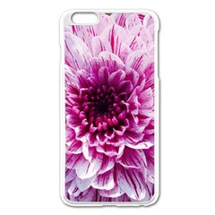 Wonderful Flowers Apple Iphone 6 Plus Enamel White Case by MoreColorsinLife