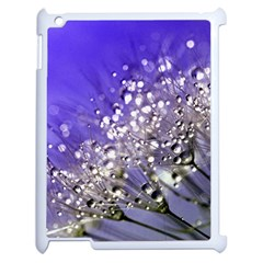 Dandelion 2015 0705 Apple Ipad 2 Case (white) by JAMFoto