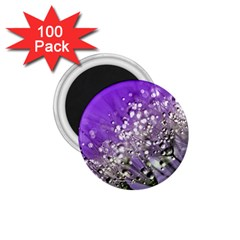 Dandelion 2015 0706 1 75  Magnets (100 Pack)
