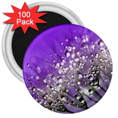 Dandelion 2015 0706 3  Magnets (100 Pack) by JAMFoto