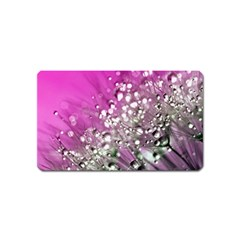 Dandelion 2015 0708 Magnet (name Card) by JAMFoto