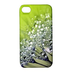 Dandelion 2015 0714 Apple Iphone 4/4s Hardshell Case With Stand by JAMFoto