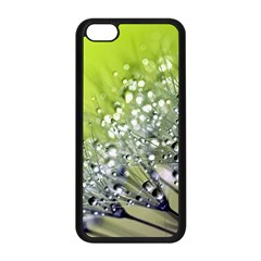 Dandelion 2015 0714 Apple Iphone 5c Seamless Case (black) by JAMFoto