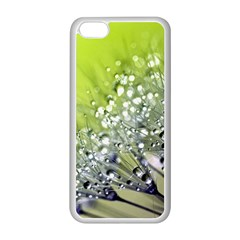 Dandelion 2015 0714 Apple Iphone 5c Seamless Case (white) by JAMFoto
