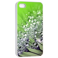 Dandelion 2015 0715 Apple Iphone 4/4s Seamless Case (white)
