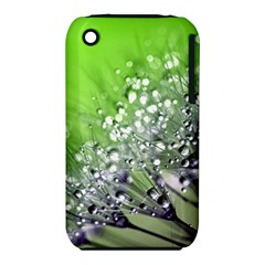Dandelion 2015 0715 Apple Iphone 3g/3gs Hardshell Case (pc+silicone) by JAMFoto