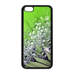 Dandelion 2015 0715 Apple Iphone 5c Seamless Case (black) by JAMFoto