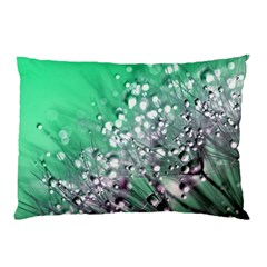 Dandelion 2015 0718 Pillow Cases