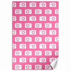 Pink Modern Chic Vector Camera Illustration Pattern Canvas 20  X 30