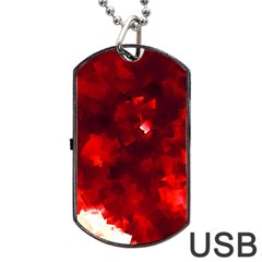 Space Like No 4 Dog Tag Usb Flash (one Side) by timelessartoncanvas