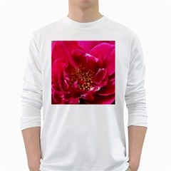 Red Rose White Long Sleeve T-shirts by timelessartoncanvas