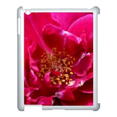 Red Rose Apple Ipad 3/4 Case (white) by timelessartoncanvas