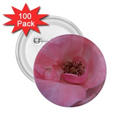 Pink Rose 2.25  Buttons (100 pack)