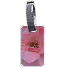 Pink Rose Luggage Tags (two Sides) by timelessartoncanvas