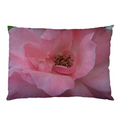 Pink Rose Pillow Cases (Two Sides)
