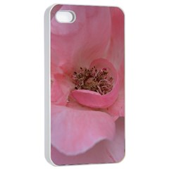 Pink Rose Apple Iphone 4/4s Seamless Case (white) by timelessartoncanvas