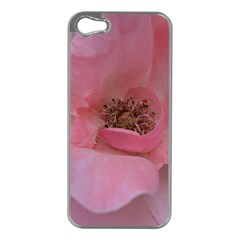 Pink Rose Apple iPhone 5 Case (Silver)