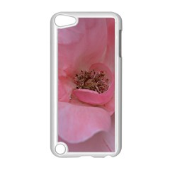 Pink Rose Apple iPod Touch 5 Case (White)