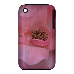 Pink Rose Apple Iphone 3g/3gs Hardshell Case (pc+silicone) by timelessartoncanvas