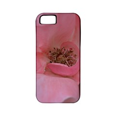 Pink Rose Apple Iphone 5 Classic Hardshell Case (pc+silicone) by timelessartoncanvas