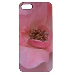 Pink Rose Apple iPhone 5 Hardshell Case with Stand