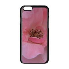 Pink Rose Apple Iphone 6 Black Enamel Case by timelessartoncanvas