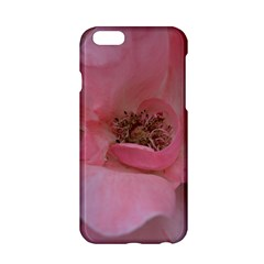 Pink Rose Apple Iphone 6/6s Hardshell Case by timelessartoncanvas