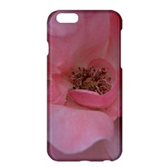 Pink Rose Apple iPhone 6/6S Plus Hardshell Case