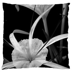 Exotic Black And White Flowers Large Cushion Cases (two Sides)  by timelessartoncanvas