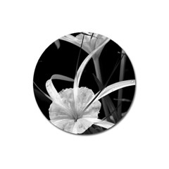 Exotic Black And White Flowers Magnet 3  (round) by timelessartoncanvas