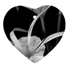 Exotic Black And White Flowers Heart Ornament (2 Sides) by timelessartoncanvas