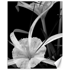 Exotic Black And White Flowers Canvas 11  X 14   by timelessartoncanvas