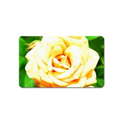 Orange Yellow Rose Magnet (name Card) by timelessartoncanvas