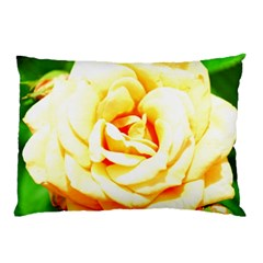 Orange Yellow Rose Pillow Cases (two Sides) by timelessartoncanvas