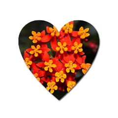 Orange And Red Weed Heart Magnet by timelessartoncanvas