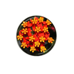 Orange And Red Weed Hat Clip Ball Marker (4 Pack)