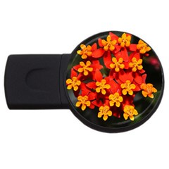 Orange And Red Weed Usb Flash Drive Round (4 Gb)  by timelessartoncanvas