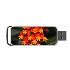Orange And Red Weed Portable Usb Flash (two Sides) by timelessartoncanvas