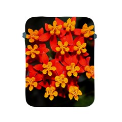 Orange And Red Weed Apple Ipad 2/3/4 Protective Soft Cases by timelessartoncanvas