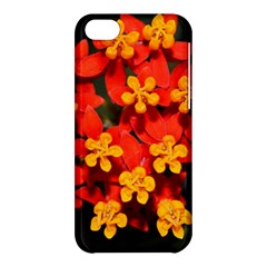 Orange And Red Weed Apple Iphone 5c Hardshell Case by timelessartoncanvas
