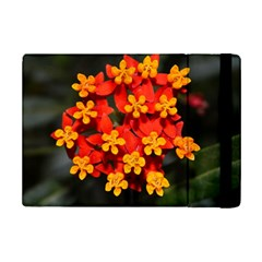 Orange And Red Weed Ipad Mini 2 Flip Cases by timelessartoncanvas