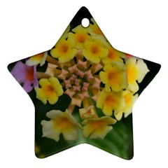 Colorful Flowers Ornament (star)