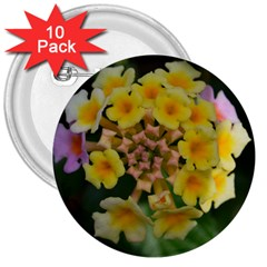 Colorful Flowers 3  Buttons (10 Pack)  by timelessartoncanvas