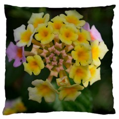 Colorful Flowers Large Cushion Cases (one Side)  by timelessartoncanvas