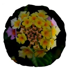 Colorful Flowers Large 18  Premium Flano Round Cushions