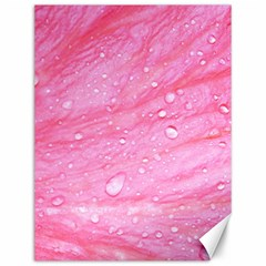 Pink Canvas 12  X 16   by timelessartoncanvas