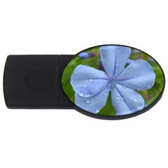 Blue Water Droplets Usb Flash Drive Oval (4 Gb)  by timelessartoncanvas