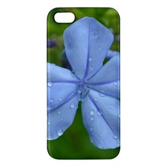 Blue Water Droplets Iphone 5s Premium Hardshell Case by timelessartoncanvas